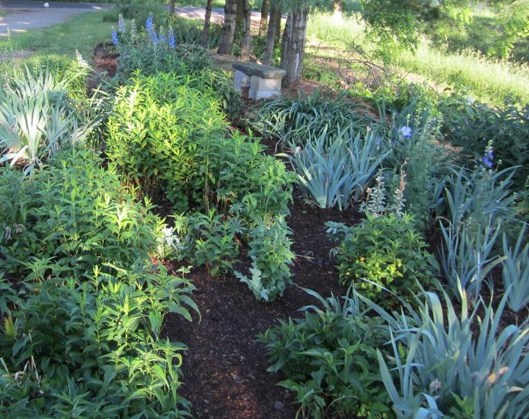 the square garden