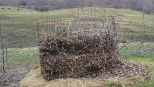 new compost bin