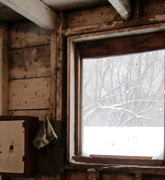 I like this photo, of the view outside one of the windows in the horse barn.