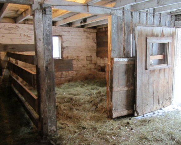 Here is Casey's stall. It's bedded with lots of hay, and stays there all winter--in the spring it gets cleaned out and makes good mulch for the garden.