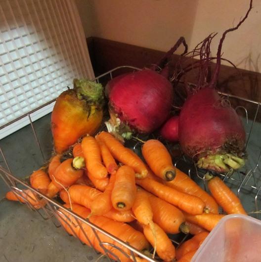 January veggies