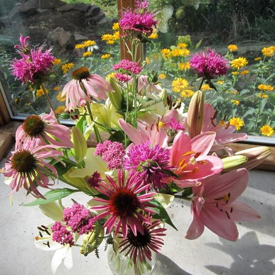 echinacea, pink asiatic lilies, pink monarda