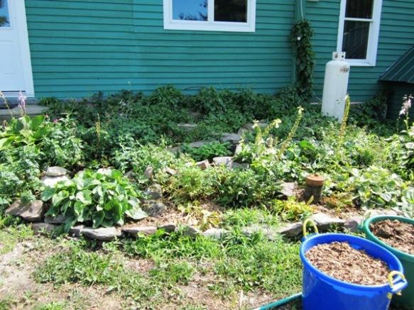 Kitchen garden before dismantling