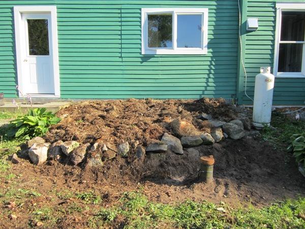 kitchen garden July 21, 2012