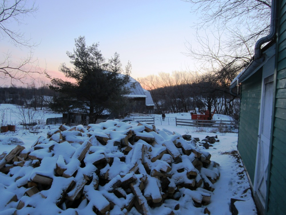 next year's wood supply, and the sun ready to come up