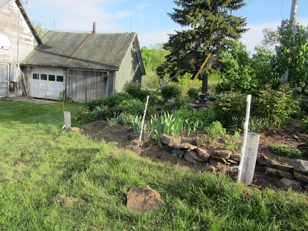 taming the back yard flower garden