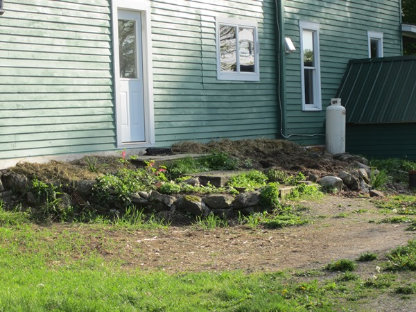 Before--just soil and a thick hay mulch