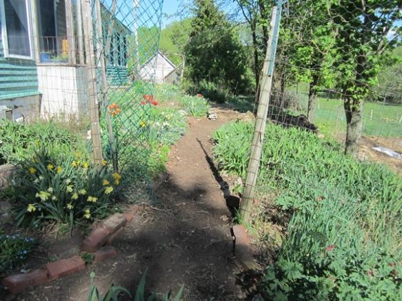 nice weed-free path
