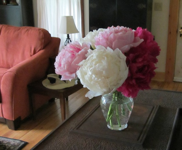 a few peonies make a bouquet