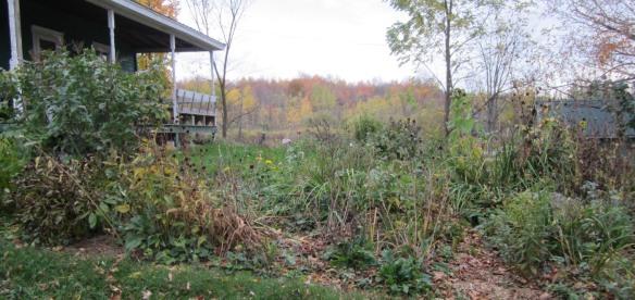 quiet fall garden colors