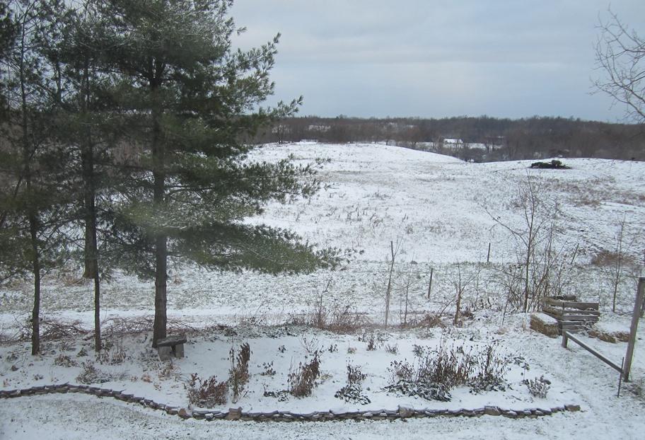 nov 12 snowy morning 022