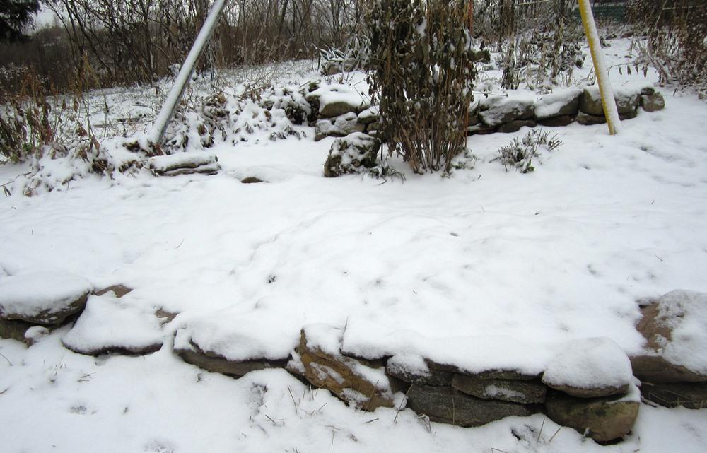 nov 12 snowy morning 026