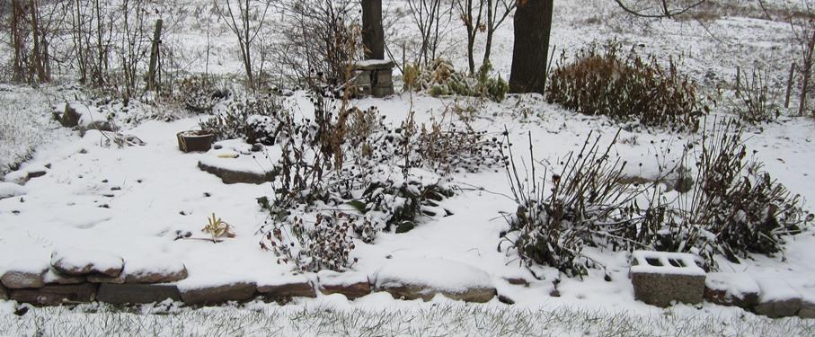 nov 12 snowy morning 032