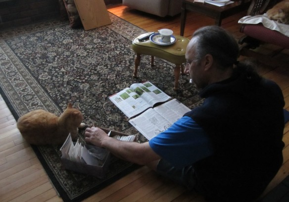 David helped by Norman choosing seeds from the Jonny's and Fedco catalogs