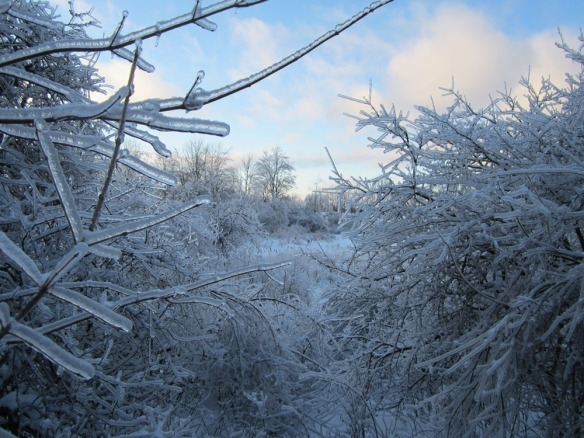everywhere I walked I scattered broken bits of ice. It was like walking through a china shop.