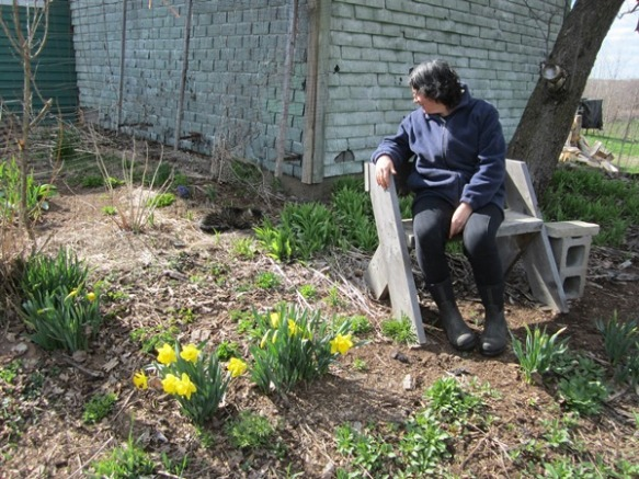 sitting under the apple tree with Tater and daffodils, April 29