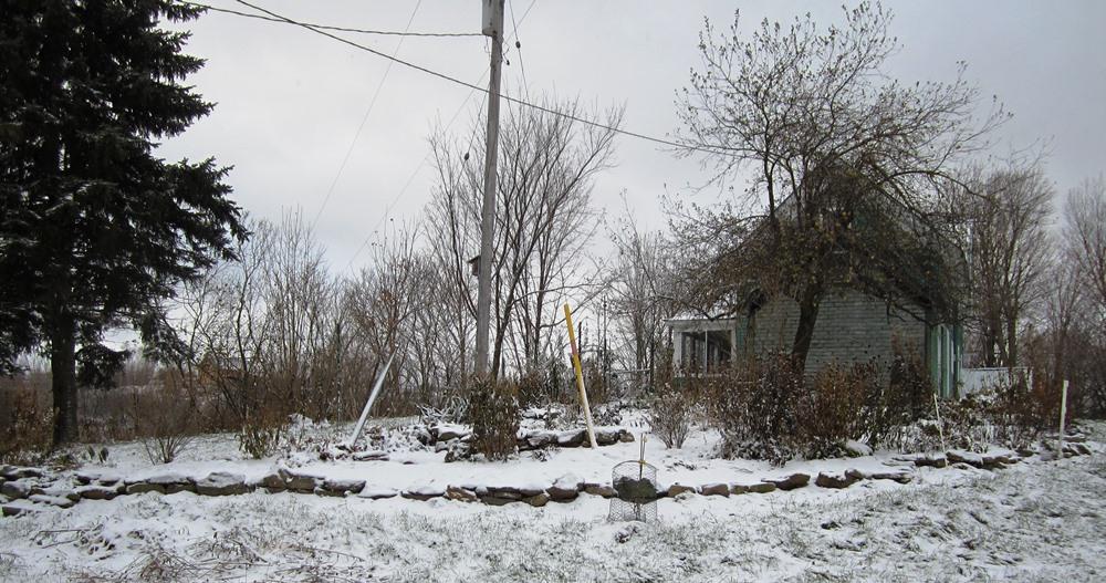 nov 12 snowy morning 025