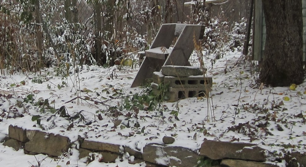 nov 12 snowy morning 030