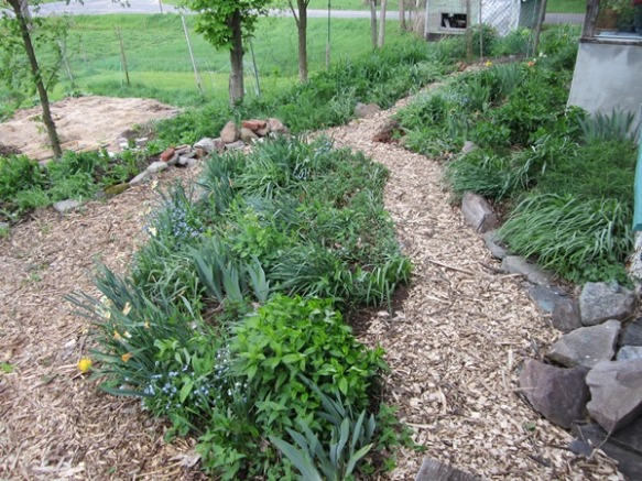 the paths in the meditation garden were widened and mulched with wood chips