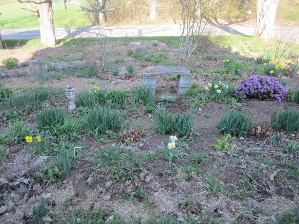 may 12 garden 045