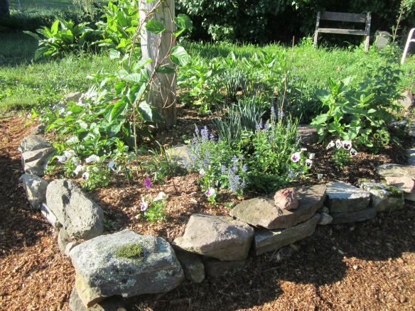 back yard telephone pole garden mulched