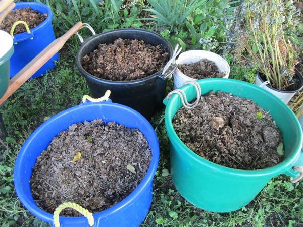 compost!