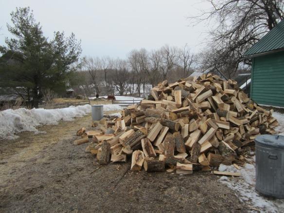 next year's firewood