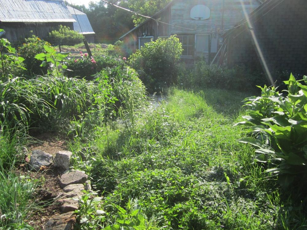 garden 324