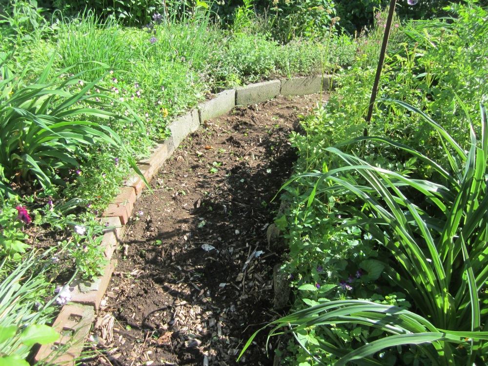 garden 337