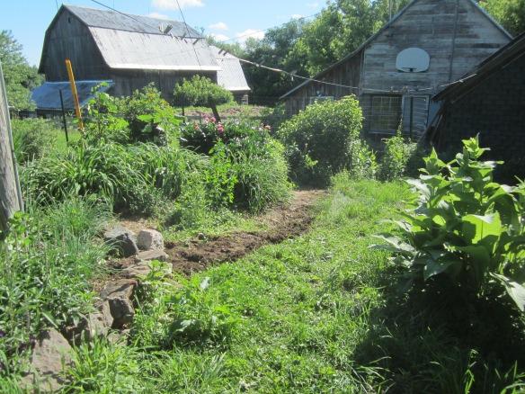 garden 338