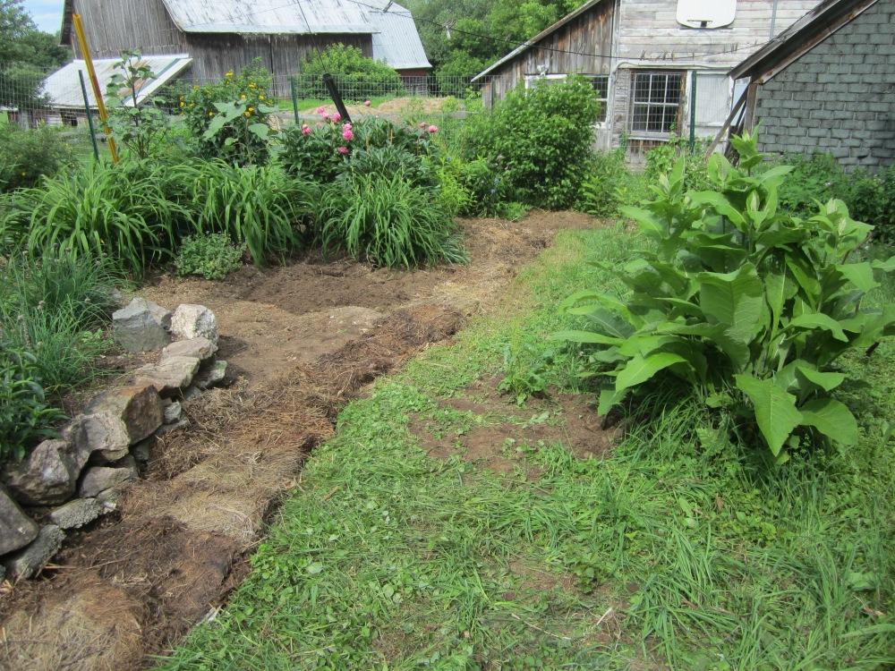 garden 351