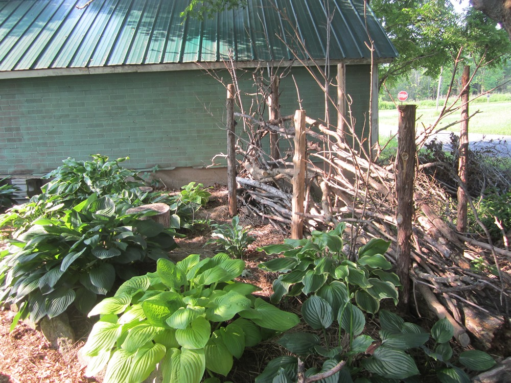 garden 403