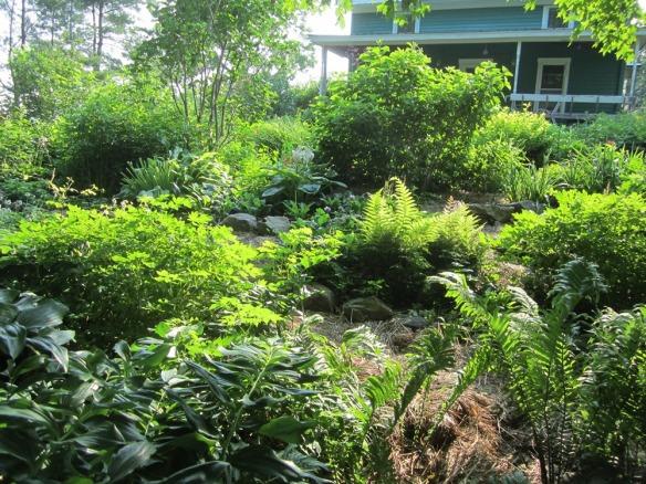 garden 405