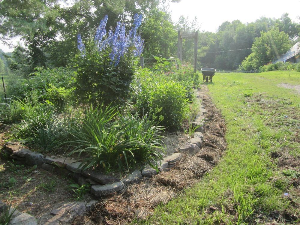garden 410