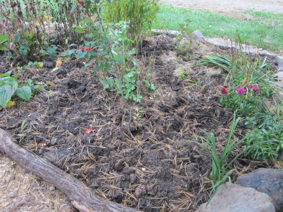 compost added