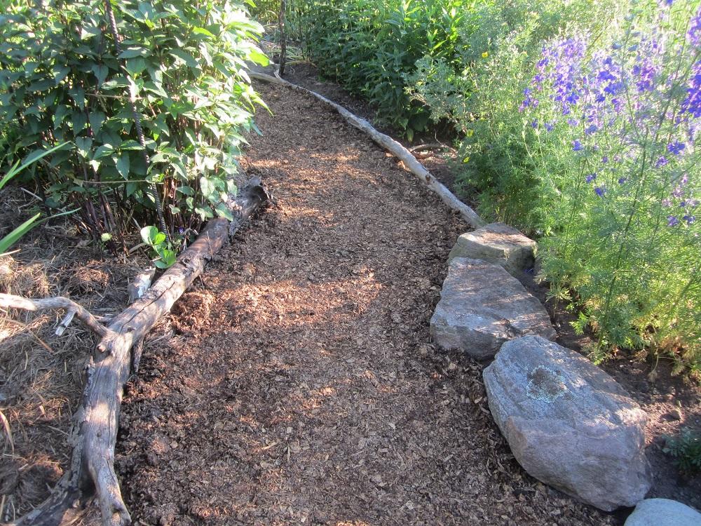 new backyard pathway