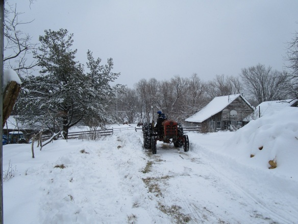 David plowing the driveway