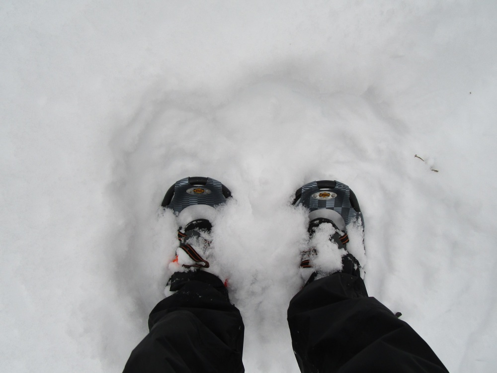 This is the first day this winter we have had enough snow for me to strap on my snowshoes