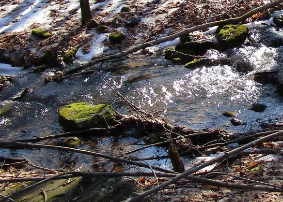 mossy-rock-in-stream