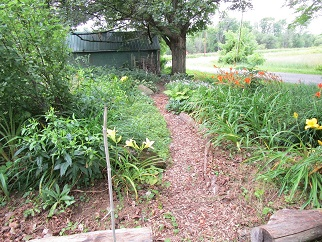 004 path bottom of front yard